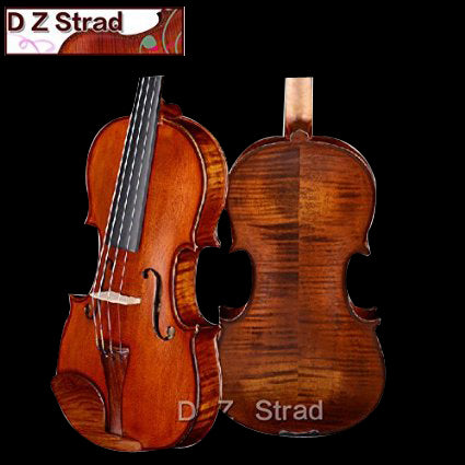 Rental Violins LC200 Models