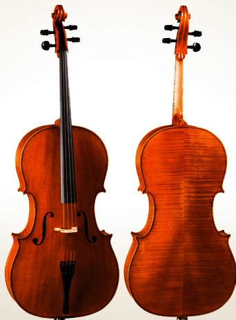 D Z Strad Cello Model 900