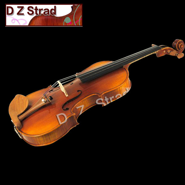 Rental Violins Professional Models