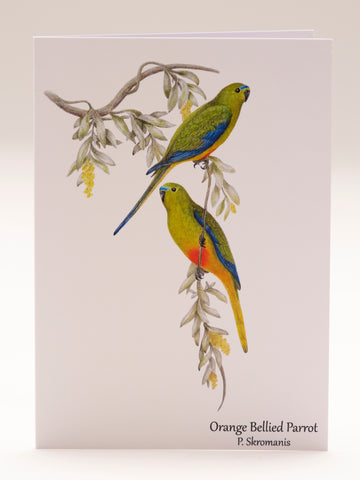 Greeting Card - Orange Bellied Parrot