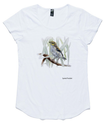 T-shirt - Forty-Spotted Pardalote
