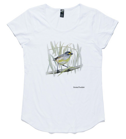 T-shirt - Striated Pardalote