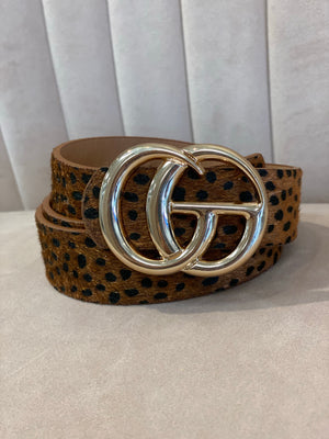 Dotted GG Belt : Brown