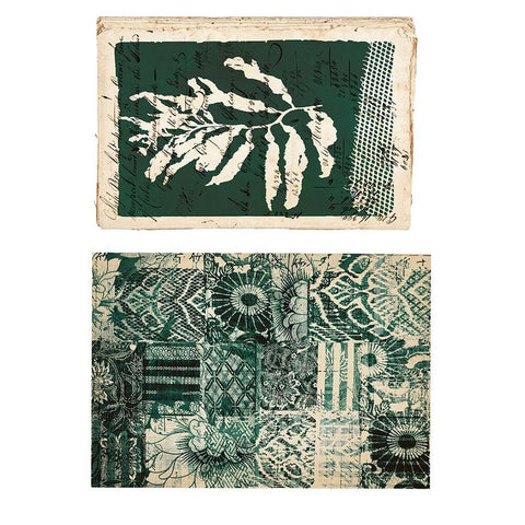 Algae - Prima Decor Transfer