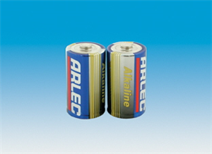 BATTERY - D ALKALINE PK2