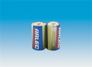 BATTERIES - C TYPE - ALKALINE - Pkt 2