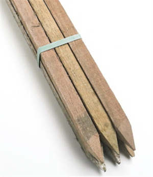STAKES -  GARDEN HARDWOOD  -  25x25x1800mm  - 6 PACK