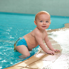 Load image into Gallery viewer, LITTLE SWIMMERS DISPOSABLE SWIM DIAPER SIZE 3-8KG - PACK OF 12