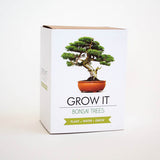 Gift Republic Grow It Bonsai Trees
