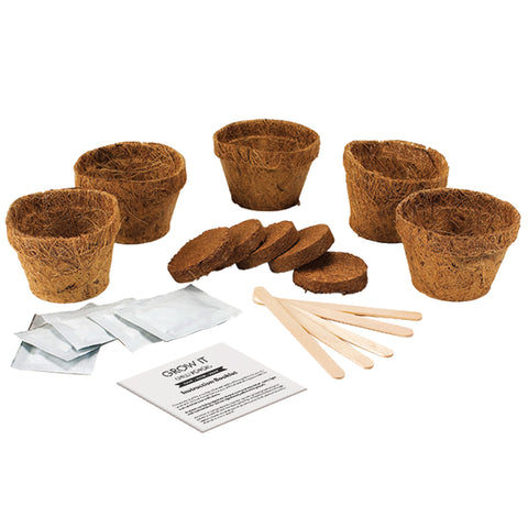 Gift Republic Grow It Chilli Peppers Kit