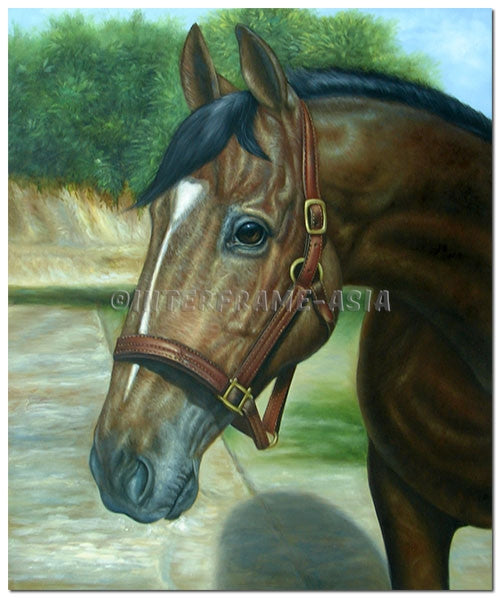 Wonderful Horse - Painting On Canvas at INTERFRAME-ASIA