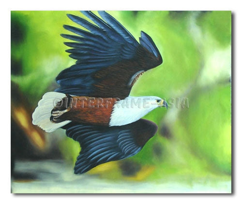 Swooping Eagle - Painting On Canvas at INTERFRAME-ASIA