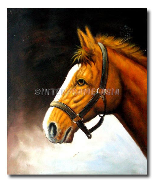 Marions Horse - Painting On Canvas at INTERFRAME-ASIA