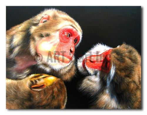 Red Faced Monkeys - Painting On Canvas at INTERFRAME-ASIA