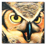 OWL - Painting On Canvas at INTERFRAME-ASIA