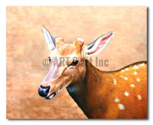 Young Deer - Painting On Canvas at INTERFRAME-ASIA