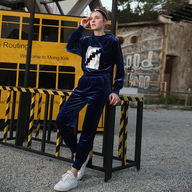 Autumn women's suit 2018 new wave fashion high collar hooded blue sweater carrot pants two sets