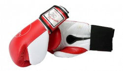 Sparring/Training Gloves - Hook & Loop