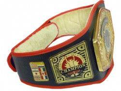 UNIVERSE TITLE BELT - Various Colour Options