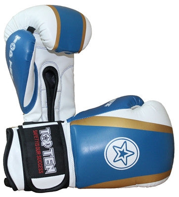 Top Ten Star Boxing Gloves 10oz
