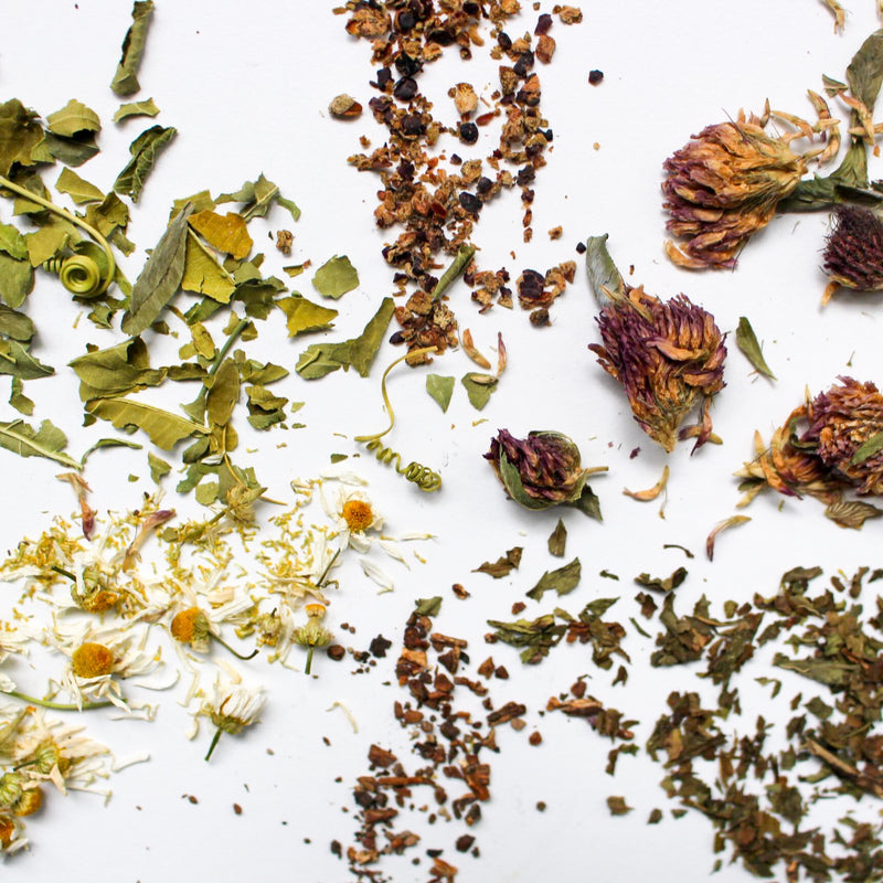 Herbal Teas for a Healthy Complexion