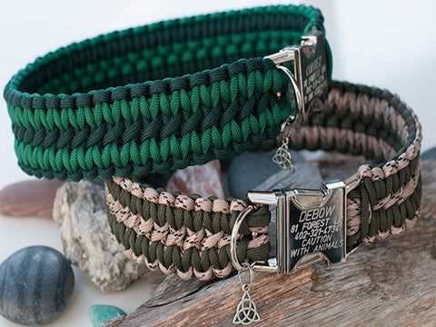 Apollo Dog Collars