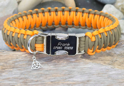 Coyote Brown and Orange King Cobra Dog Collar