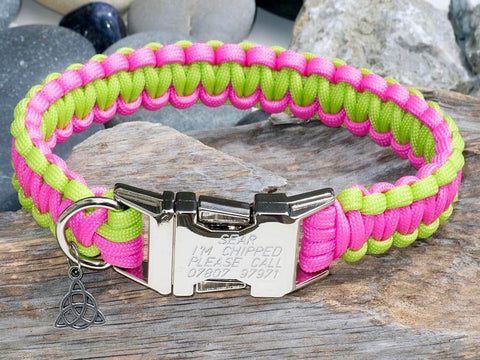 Lime Green & Neon Pink - Cobra Dog Collar