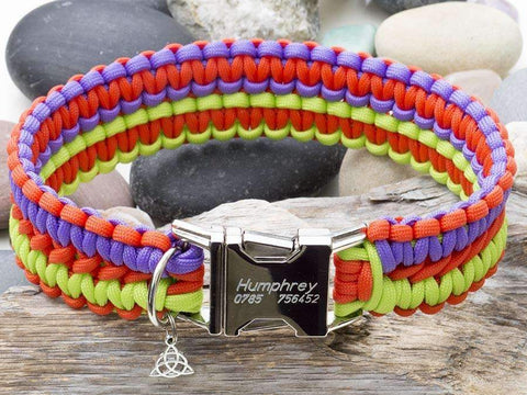 Engraved Paracord Dog Collar Lime Green, Purple & Orange