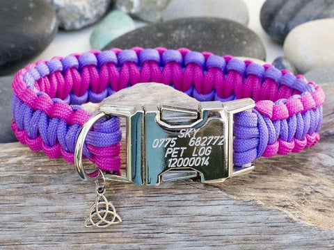 Purple & Dark Pink - Cobra Dog Collar