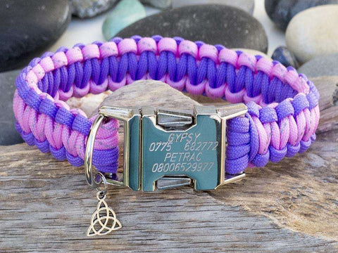 Purple & Rose Pink - Cobra Dog Collar
