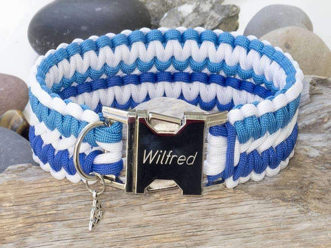 Apollo Paracord Dog Collar - White & Sky Blue