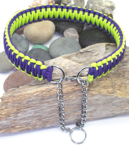 Martingale Dog Collar - Purple & Lime Green