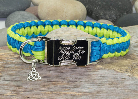 Sky Blue & Lime Green - Cobra Dog Collar