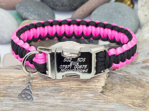 Neon Pink and Black- Cobra Dog Collar