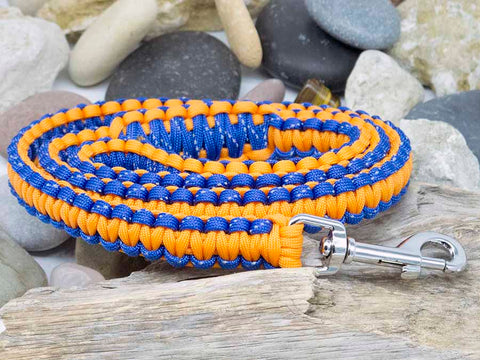 Reflective Blue and Orange Dog Lead