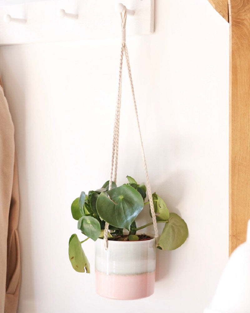 Ombre Hanging Planter
