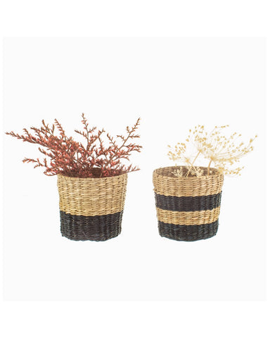 Mini  Seagrass  Planters Set Of 2