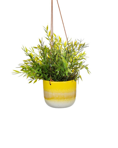 Yellow Mojave Hanging Planter