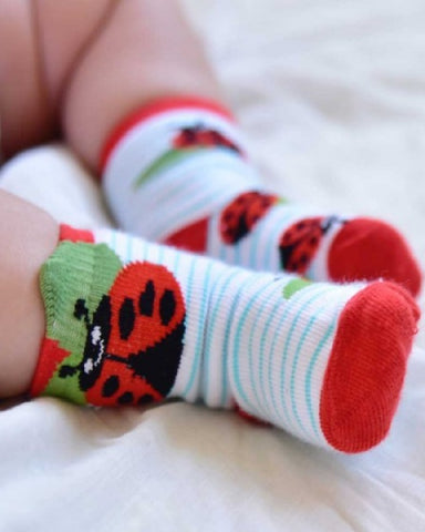Ladybird Baby Socks All Sizes