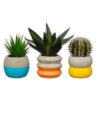 Colour Block Cement Planter  Assorted