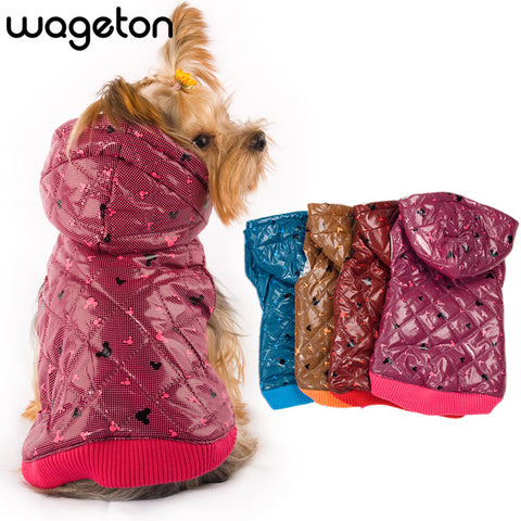 Autumn/Winter Fashion Travel Dog clothes