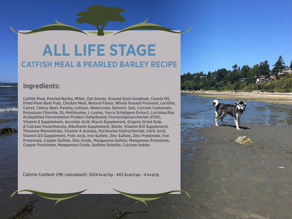 Blackwood All Life Stages Dog, Special Diet, Sensitive Skin, Catfish Meal & Pearled Barley Recipe