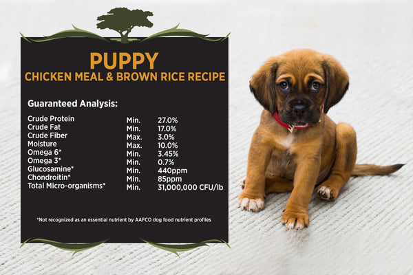 Blackwood Puppy Food, Growth Diet, Chicken Meal & Brown Rice Recipe