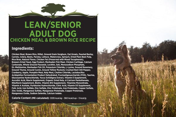 Blackwood Adult Dog, Lean/Senior, Chicken Meal & Brown Rice Recipe