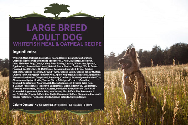 Blackwood Adult Dog, Large Breed, Whitefish Meal & Oatmeal Recipe
