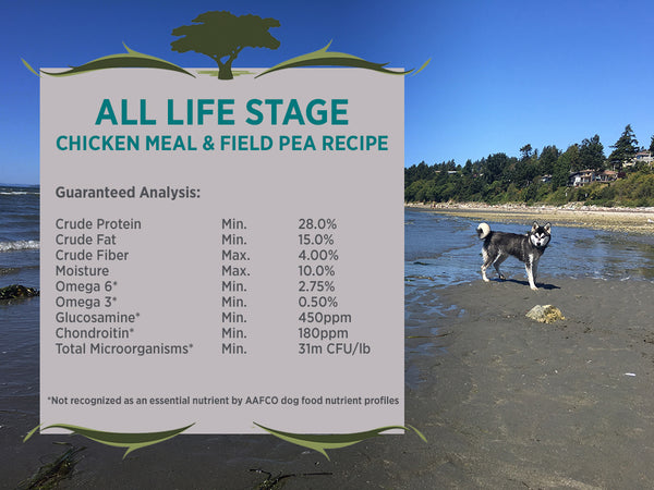 Blackwood All Life Stages Dog, Special Diet, Grain Free, Chicken Meal & Field Pea Recipe
