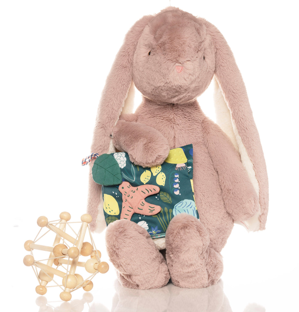 The Very Lage Bunny gift set