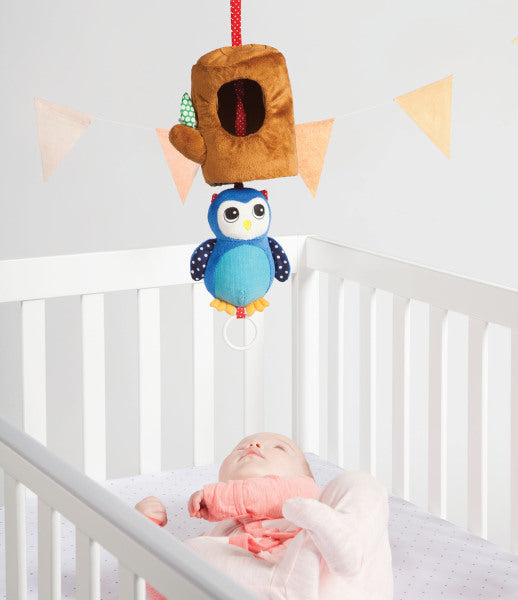213380_Lullaby Owl_05