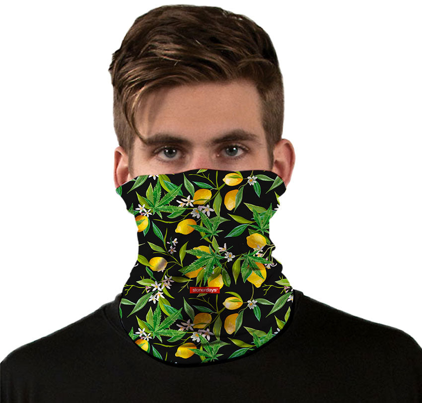 Lemon Kush Neck Gaiter